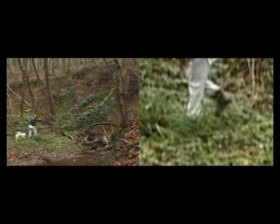 Locations, The Gorge, video still, 2003