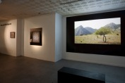 The Horizon Tries - installation view