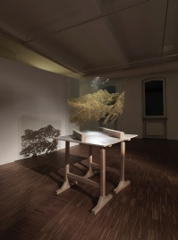 Evil Earth installation view